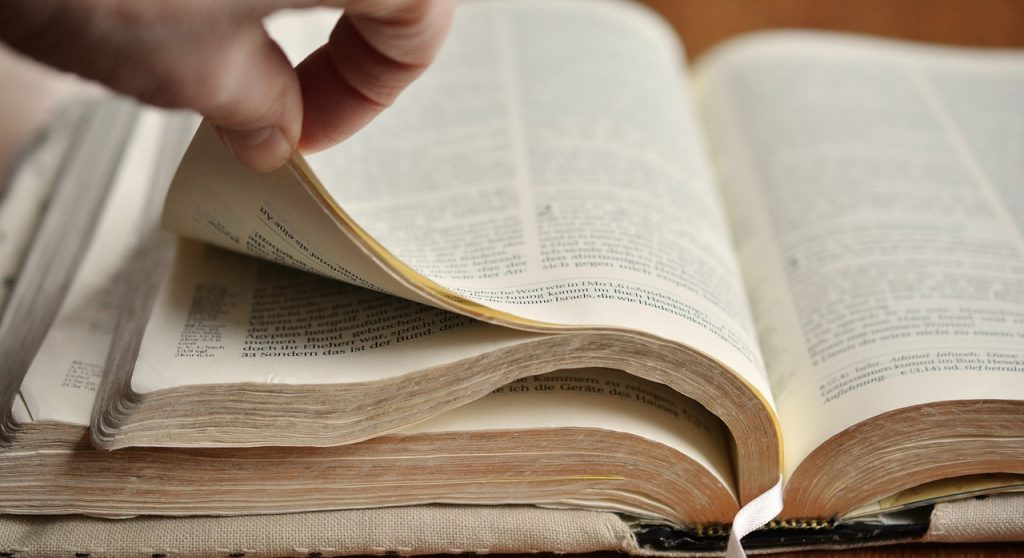 book pages, bible, browse